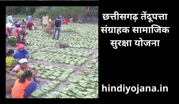 Chhattisgarh Tendupatta Sangrahak Samaj Suraksha Yojana