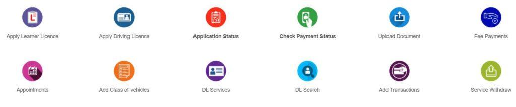 Download Driving License PDF
