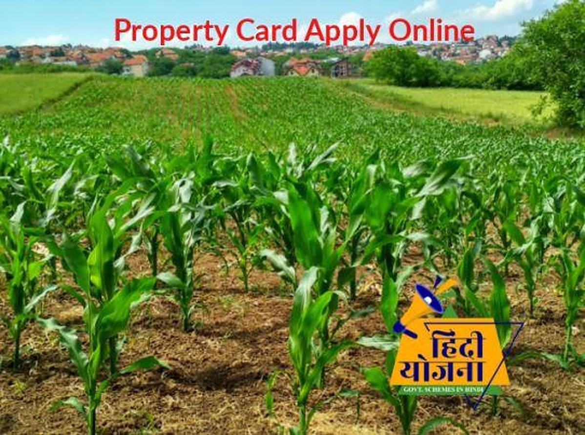 Property Card