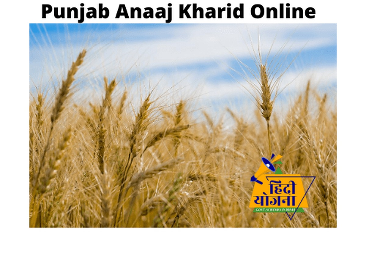 Punjab Anaaj Kharid Online