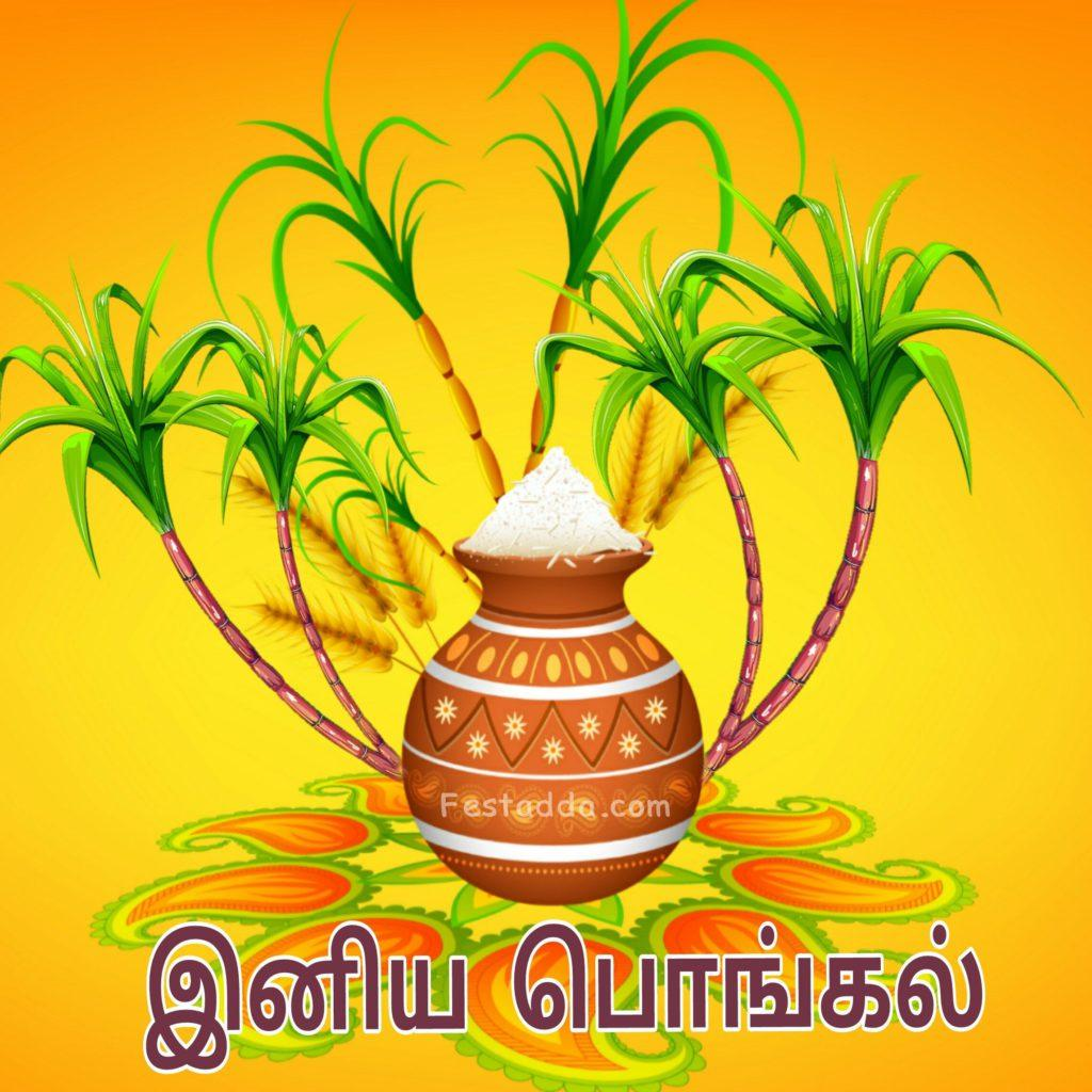 Happy Pongal 2021