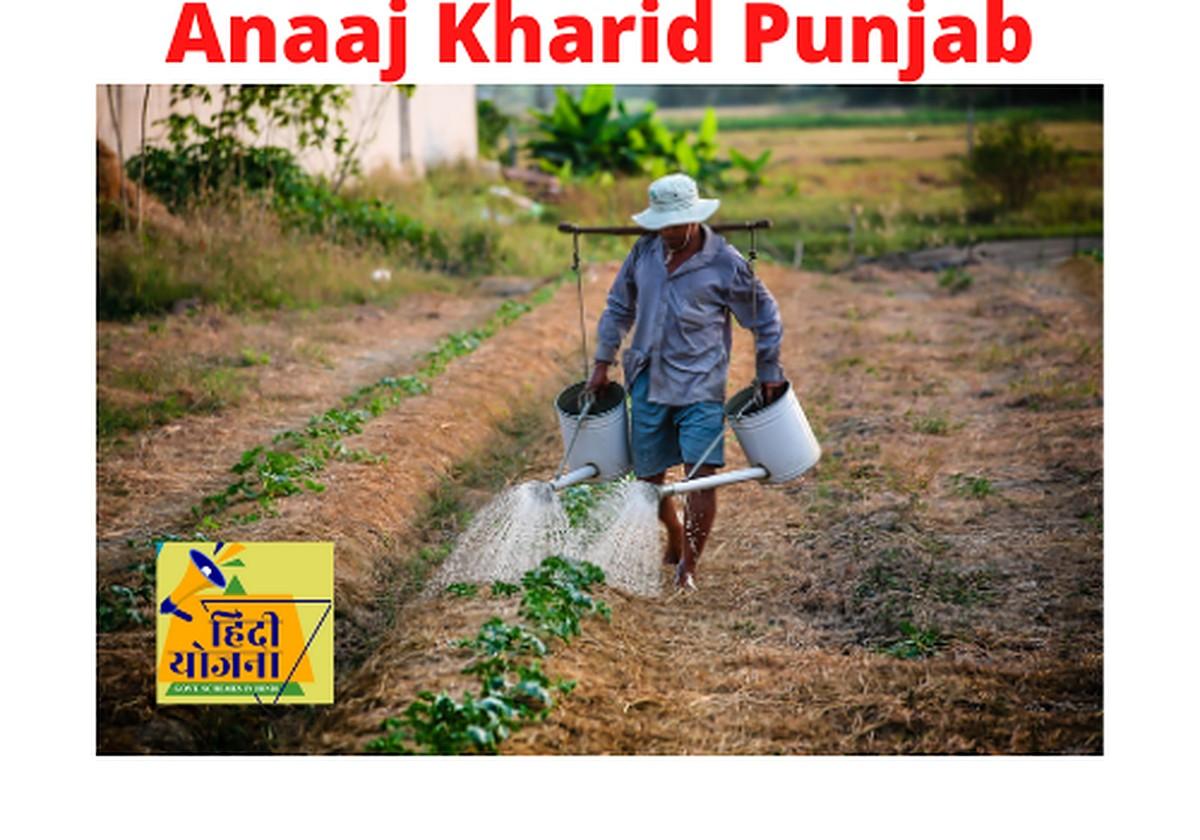 Anaaj Kharid Punjab