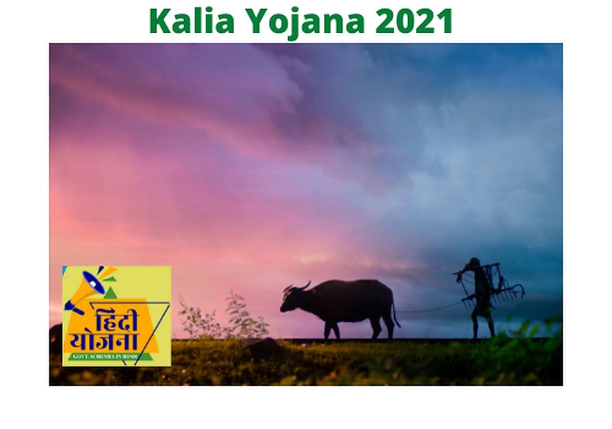 Kalia Yojana 2021